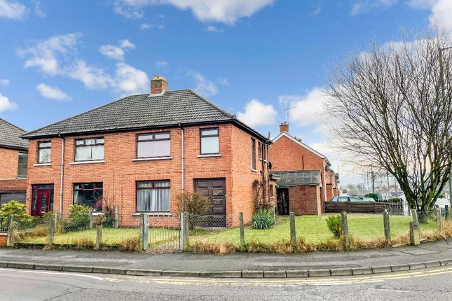 Thumbnail Semi-detached house to rent in Warren Gardens, Lisburn