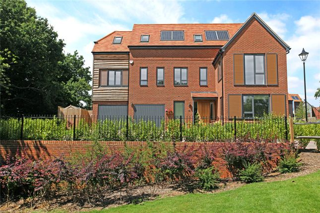 Thumbnail Detached house for sale in Sycamore Avenue, Godalming, Surrey