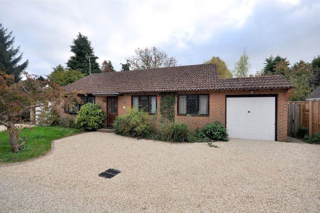 Thumbnail Bungalow for sale in Tudor Drive, Westergate, Chichester