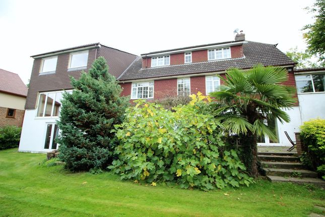 Thumbnail Detached house for sale in Telegraph Hill, Higham
