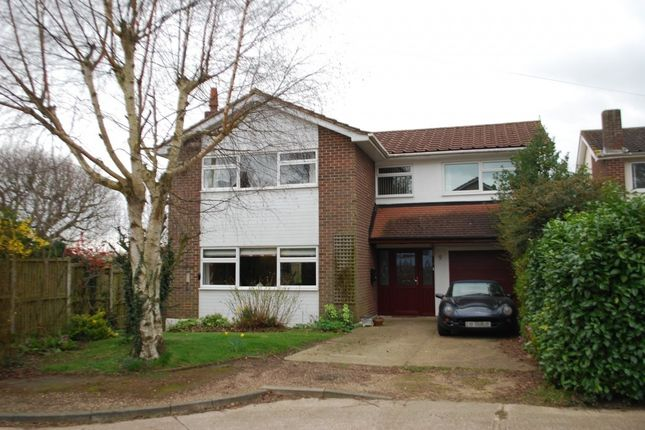Thumbnail Detached house for sale in Highfield Close, Chelmsford, Essex