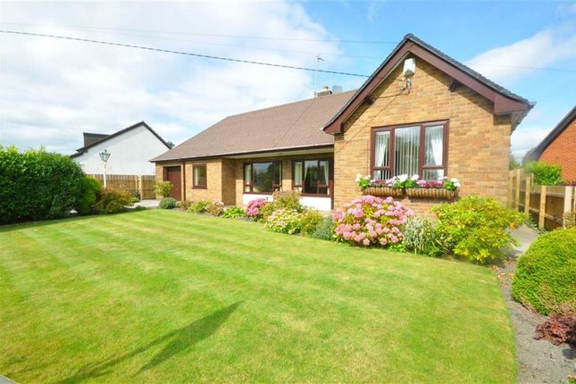 Thumbnail Detached bungalow for sale in Higher Common Road, Buckley