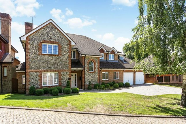 Thumbnail Detached house to rent in Sheridan Grange, Sunningdale, Ascot