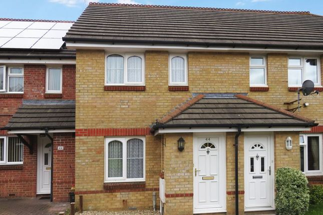 Thumbnail Terraced house to rent in Bryer Close, Chard