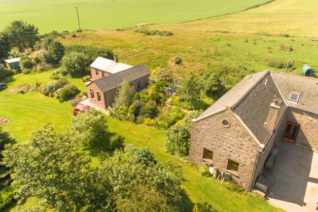 Thumbnail Detached house for sale in Johnshaven, Montrose