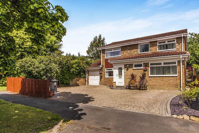 Thumbnail Detached house for sale in Hamsterley Drive, Crook