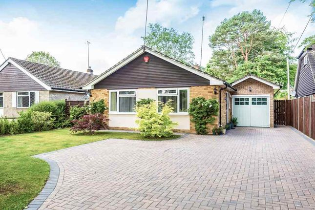 Thumbnail Detached bungalow for sale in Kiln Ride, Finchampstead, Wokingham