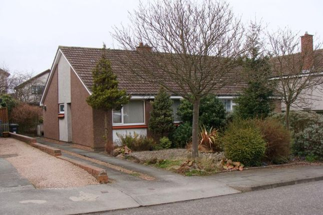 Thumbnail Bungalow to rent in 17 Radernie Place, St Andrews