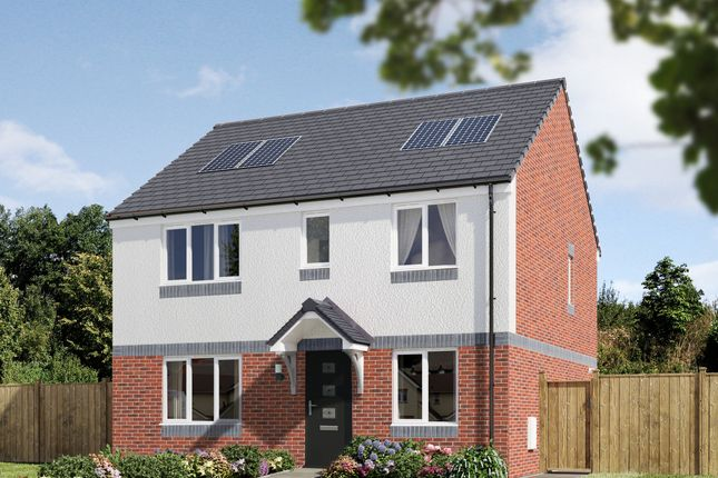 """Thumbnail Detached house for sale in """"The Thurso"""" at Naughton Road, Wormit, Newport-On-Tay"""