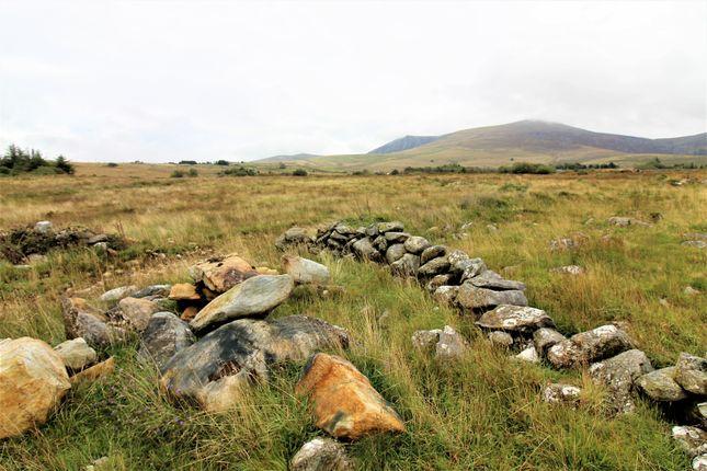 Ten Acres of Nebo, Caernarfon LL54
