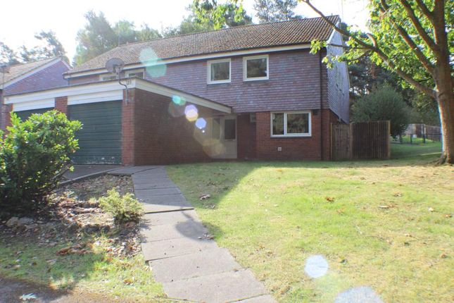 Thumbnail Detached house to rent in Bolley Avenue, Bordon