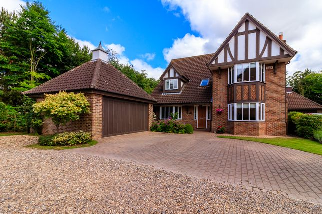 Thumbnail Detached house for sale in The Green, Swanland, North Ferriby