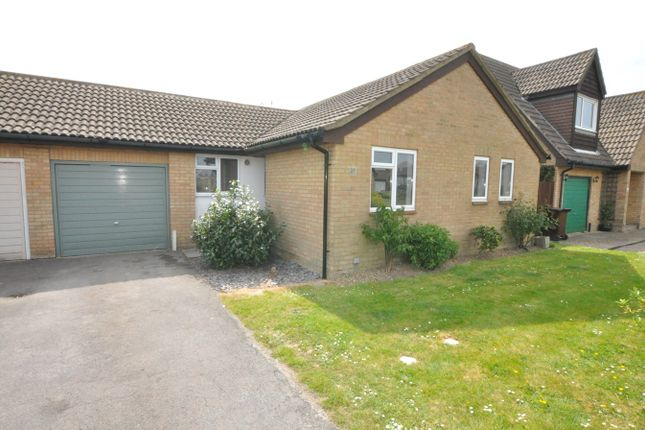 Thumbnail Bungalow to rent in The Briary, Bexhill-On-Sea