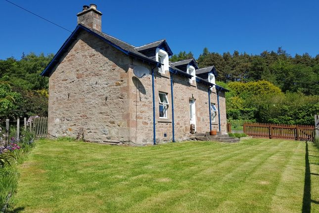 Thumbnail Detached house to rent in Chapel Road, Evanton, Dingwall