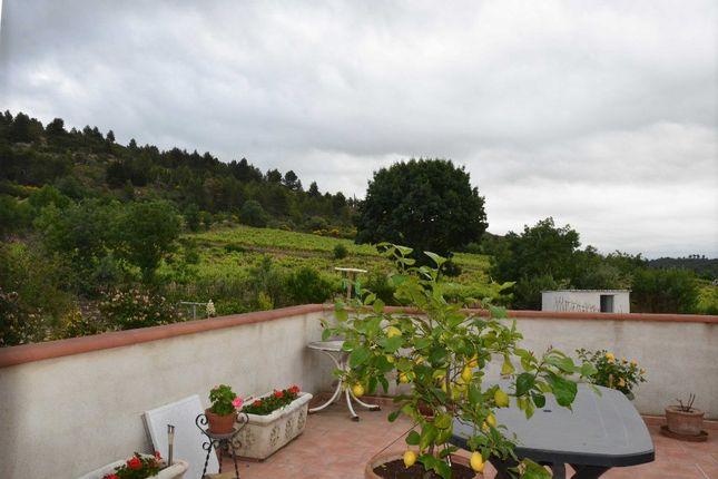 Rieux Minervois, Aude, France