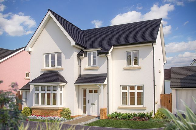 "Thumbnail Detached house for sale in ""The Birch"" at Great Brier Leaze, Patchway, Bristol"