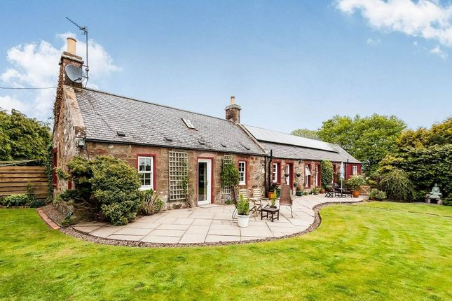 Thumbnail Property for sale in Arbroath