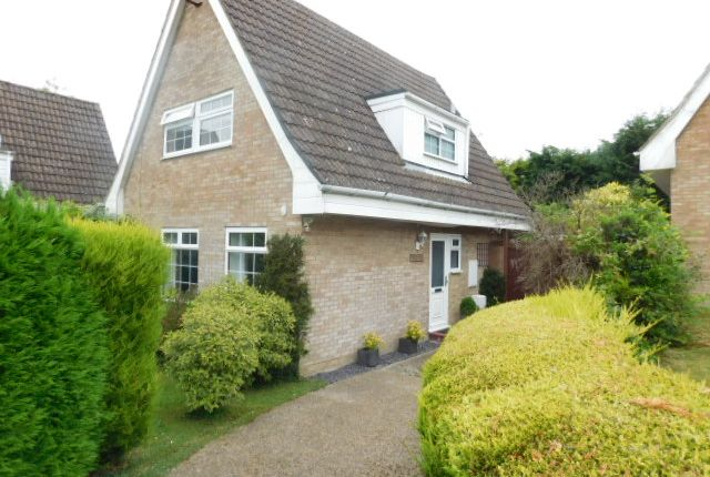 Thumbnail Detached house to rent in Hooks Wood Close, Crowborough