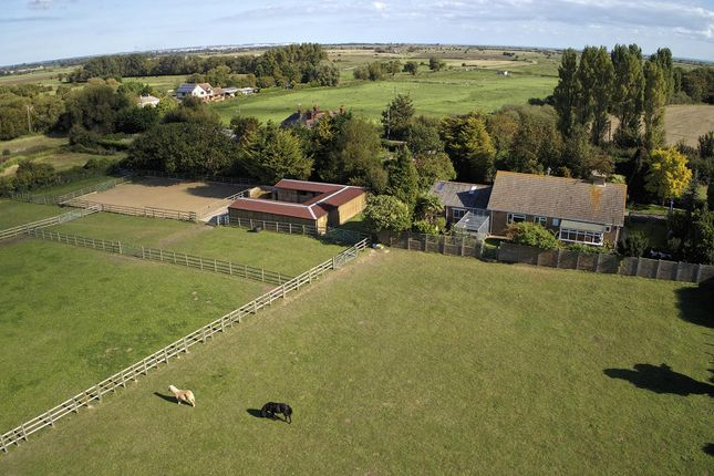 Thumbnail Equestrian property for sale in Burgess Green, Hacklinge, Deal