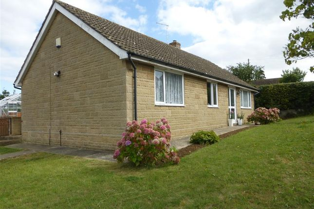 Thumbnail Bungalow to rent in Ridgway, West Chinnock, Crewkerne