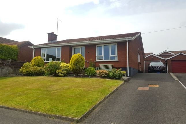 Thumbnail Bungalow for sale in Beverley Close, Newtownards