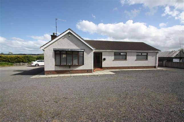 Thumbnail Detached bungalow for sale in Sandy Lane, Lisburn
