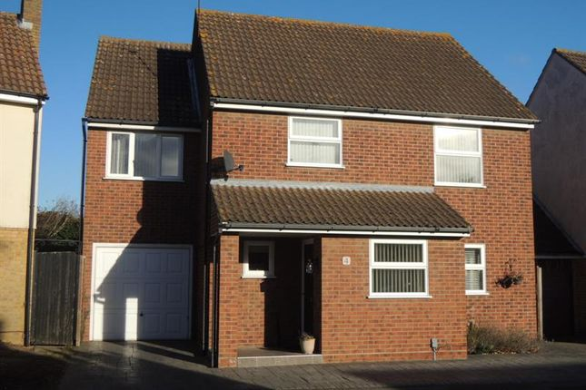 Thumbnail Detached house for sale in Bailey Dale, Stanway, Colchester
