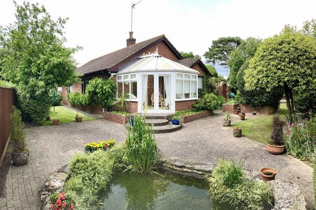 Thumbnail Detached bungalow for sale in Huntick Road, Lytchett Matravers, Poole