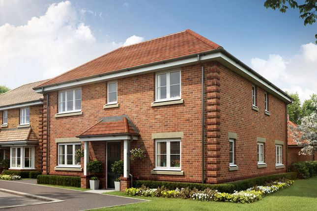 Thumbnail Detached house for sale in Beech Hill Road, Spencers Wood