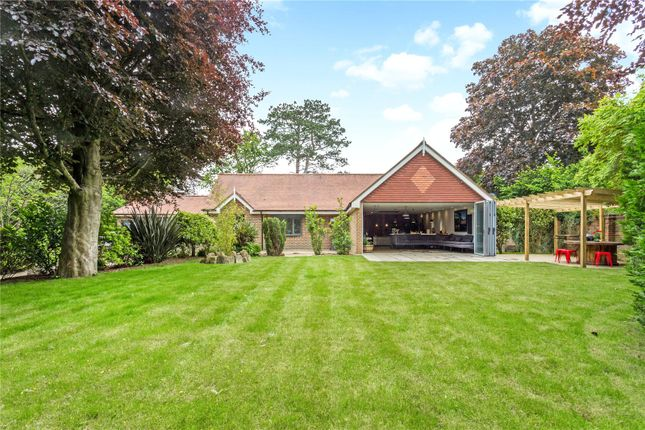 Thumbnail Detached bungalow for sale in Old Lane, Mayfield, East Sussex