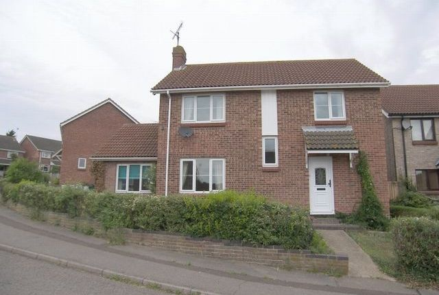 Thumbnail Detached house to rent in Cardinal Close, Colchester, Essex