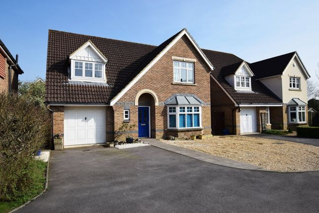 Thumbnail Detached house for sale in Bittern Close, Aldershot, Hampshire