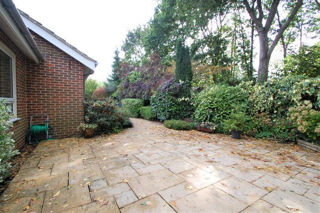 Rear Garden of Long Down, Petersfield GU31