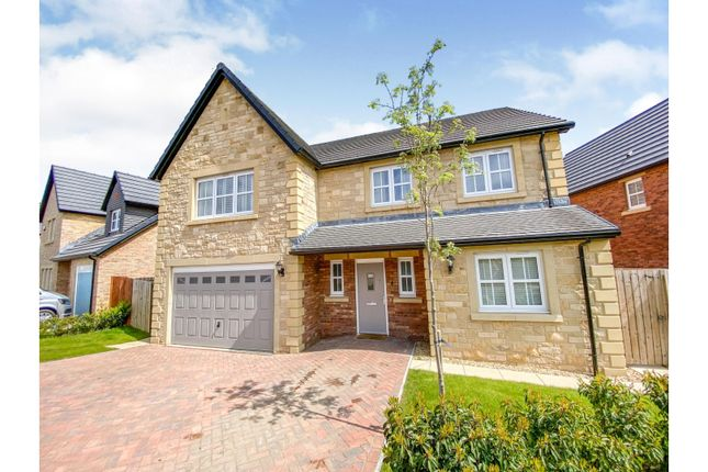 Thumbnail Detached house for sale in Harper Crescent, Alnwick