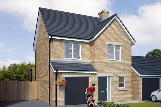 "Thumbnail Detached house for sale in ""The Newton"" at Browney Lane, Browney, Durham"