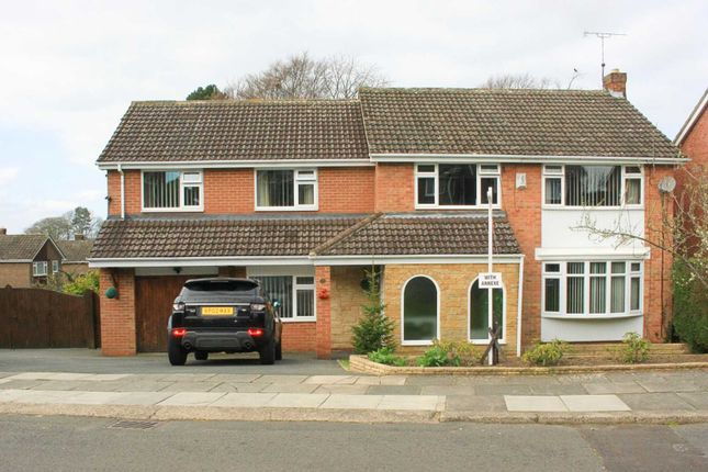 Thumbnail Detached house for sale in Hall View Grove, Darlington