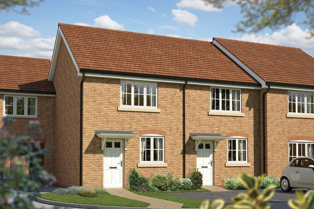 """Thumbnail Terraced house for sale in """"The Hawthorn"""" at Somerset, Wells"""