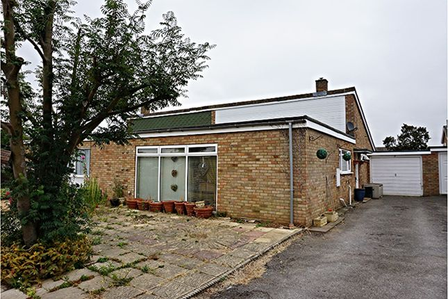 Thumbnail Semi-detached bungalow for sale in Beechside, Gamlingay