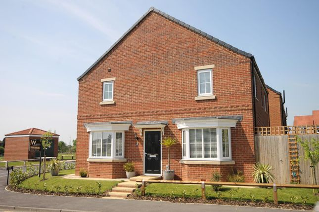 Thumbnail Detached house for sale in Meadowfields, Morton On Swale, Northallerton