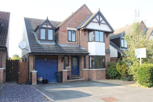 Thumbnail Detached house to rent in Ash Tree Road, Knaresborough