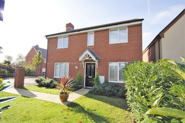 Thumbnail Detached house for sale in Greenacres Road, Locks Heath, Southampton