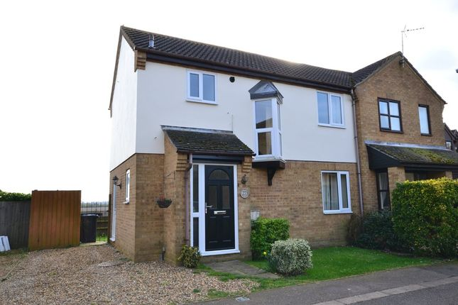 Thumbnail Semi-detached house to rent in Ward Way, Witchford, Ely