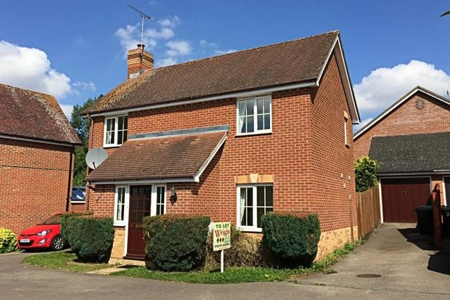Thumbnail Detached house to rent in Luxford Place, Sawbridgeworth, Herts