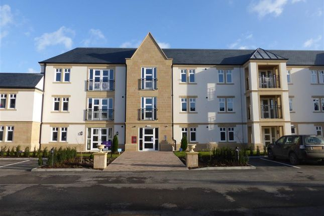 Thumbnail Property to rent in St Elphins Park, Darley Dale, Matlock