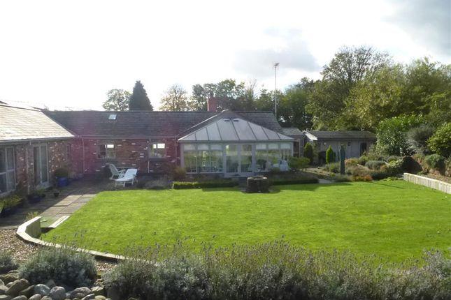 Thumbnail Detached bungalow to rent in Chester Road, Sutton Weaver, Nr Frodsham
