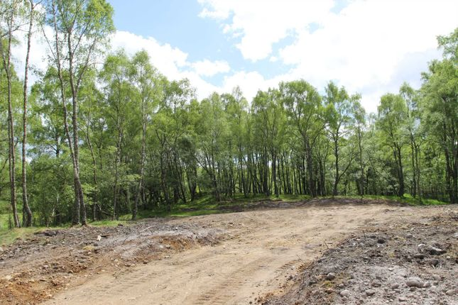 Thumbnail Land for sale in Plot Of Land, Belivat, Ardclach, Nairn, Nairnshire