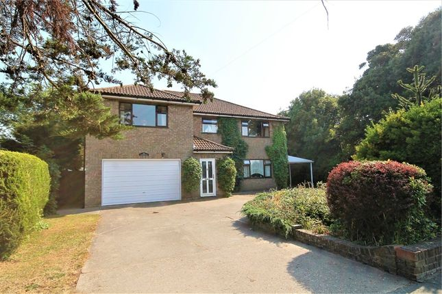Thumbnail Detached house for sale in Kirby Road, Walton On The Naze