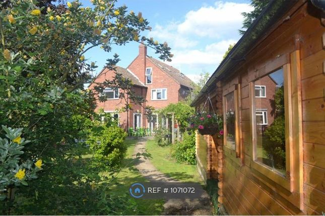 Thumbnail Detached house to rent in Abbey Road, Bedford