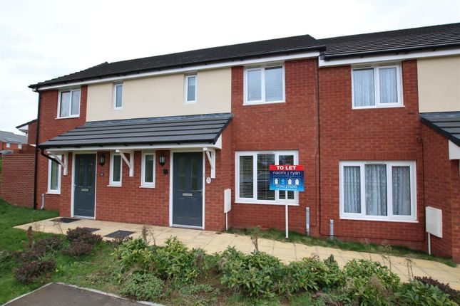 Thumbnail Terraced house to rent in Ashcroft Road, Hill Barton Vale, Exeter