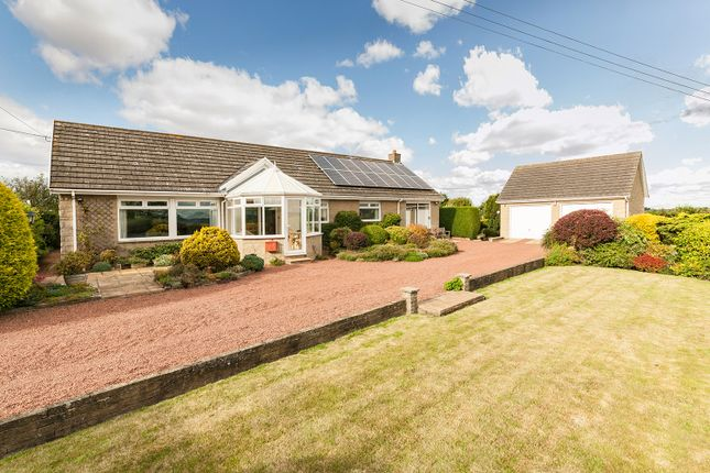 Thumbnail Detached bungalow for sale in Harlow Hill Farm Bungalow, Harlow Hill, Northumberland